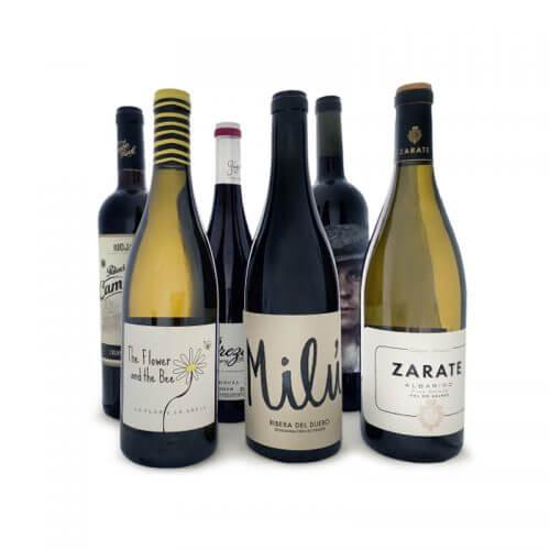 spanish-diy-wines-course-wines