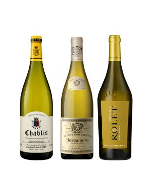 A Chardonnay Focus