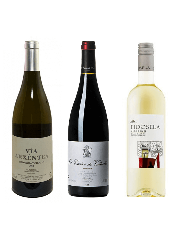 Wines of the Camino